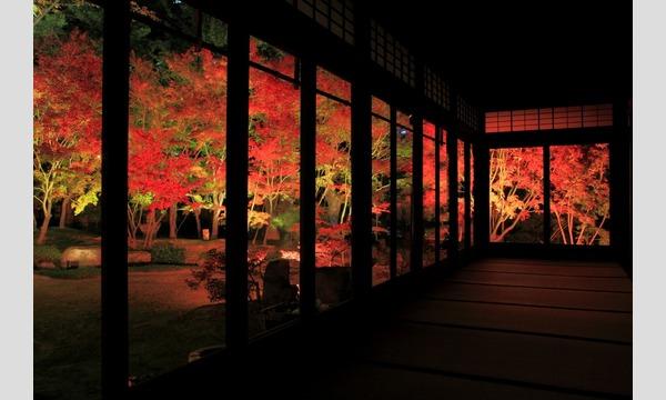 博多旧市街ライトアップウォーク2019 千年煌夜 イベント画像2