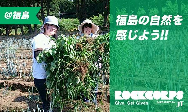 福島市の農作物作りに携わろう!土壌整備・苗植え・種まき・草むしりのお手伝い in福島イベント