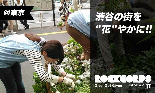 渋谷駅周辺の花壇をきれいにしよう!!【夏花】 in東京イベント