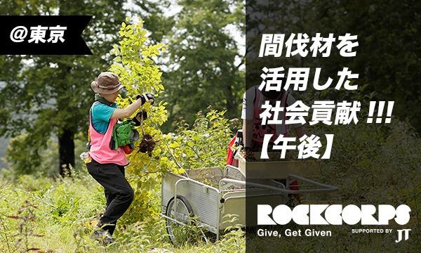 間伐材を使ったおもちゃを子どもたちに届けよう!【午後】 in東京イベント