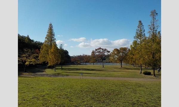 真冬の雑木林で小鳥を探そう! in 平和公園 イベント画像1