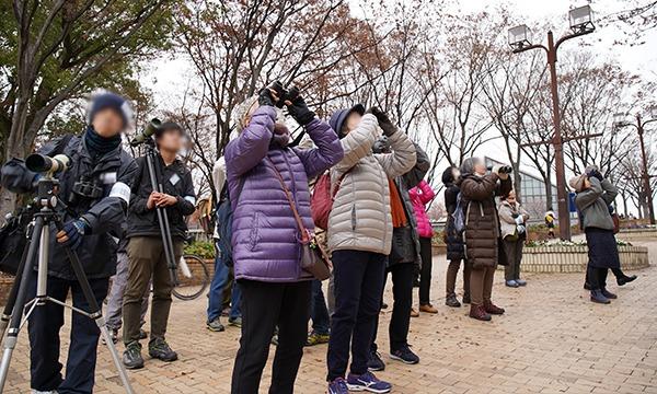 都心の公園で冬の鳥を探そう! in 庄内緑地公園 イベント画像2
