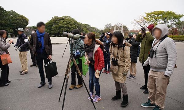 都心の公園で冬の鳥を探そう! in 庄内緑地公園 イベント画像3