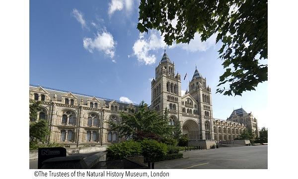 大英自然史博物館展 イベント画像1
