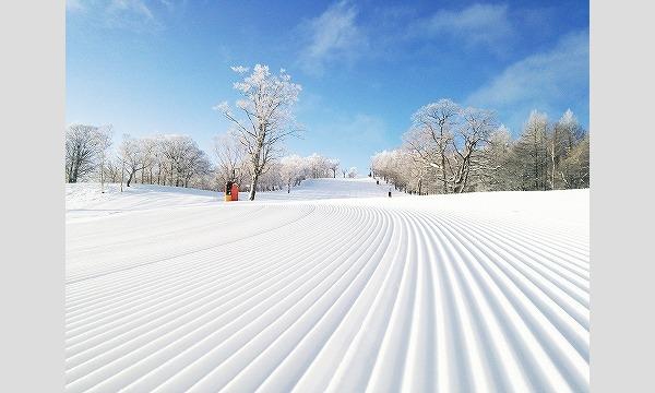 【期間限定】めいほうスキー場 前売リフト券販売! イベント画像3