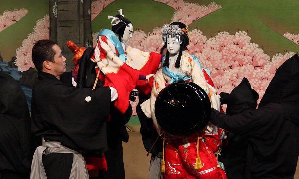 【7/18】淡路人形浄瑠璃・徳島阿波踊り「夢の競演」 イベント画像2