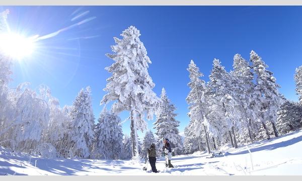 竜王スキーパーク 事前決済リフト券販売 イベント画像1