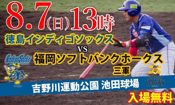 四国アイランドリーグplus2016 徳島インディゴソックス vs 福岡ソフトバンクホークス三軍 イベント画像1
