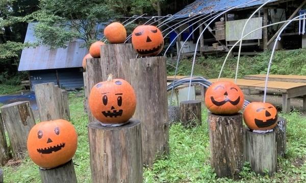 秋の尾瀬でハロウィンキャンプ ~森キャンで遊ぼう~ イベント画像3