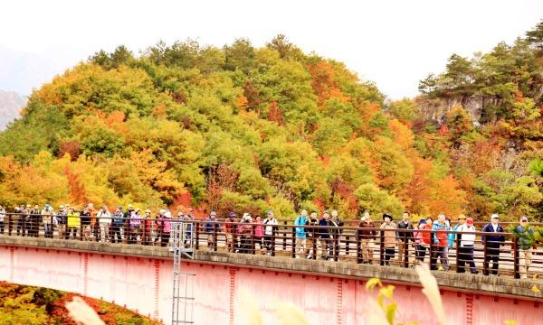 七ヶ宿湖一周ウォーキング2020 イベント画像1