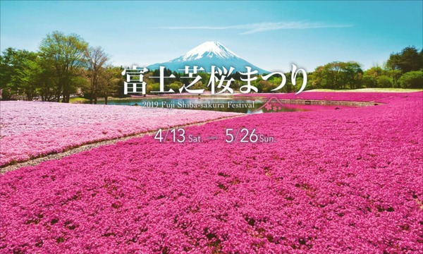 Fuji Shiba-sakura Festival Entrance Ticket 2019 イベント画像1