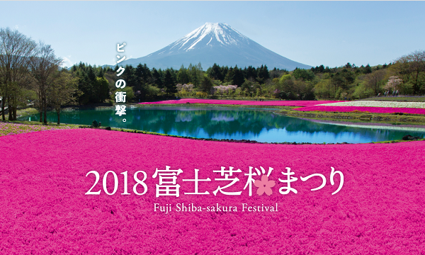 2018富士芝桜まつり入場券/ Fuji Shibazakura Festival Ticketイベント