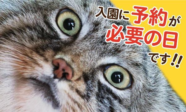 【4/18(日)】【こども動物自然公園】入園予約