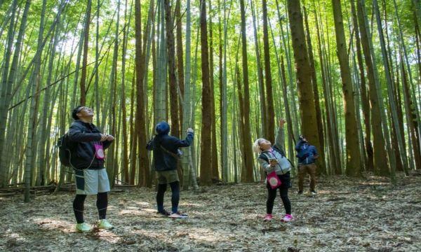 11/13(土) 第7回 ONSEN・ガストロノミーウォーキング in 長門・俵山温泉 イベント画像1