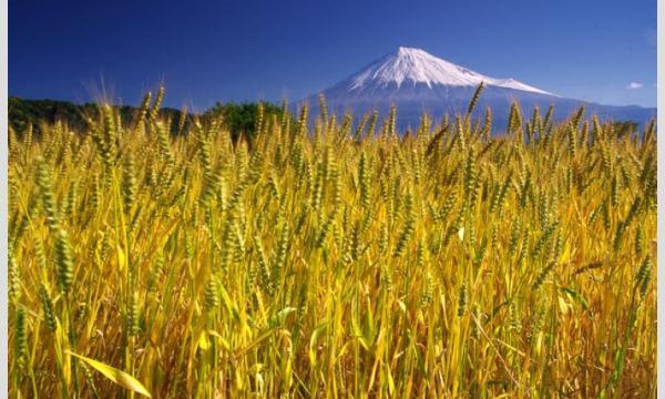 10/16(土) 初開催 ONSEN・ガストロノミーウォーキング in しずおか富士山「富士下山のすゝめ」 イベント画像1