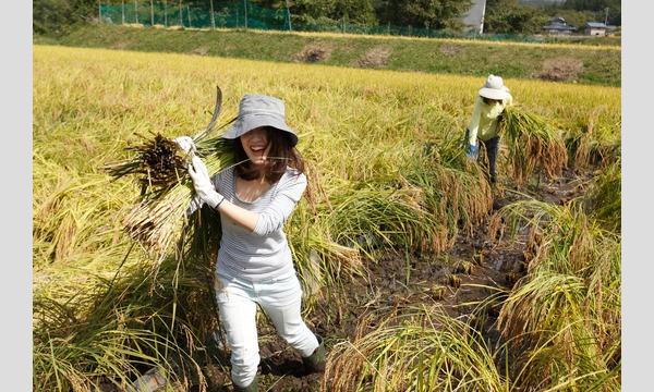 行きつけ農家をつくろう 日帰りいなか暮らし体験(10/13) イベント画像1