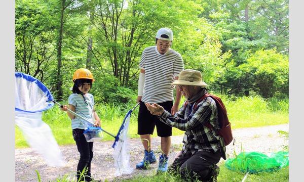 みんなの里山「市民の森」で いきもの探し(9/21) イベント画像1