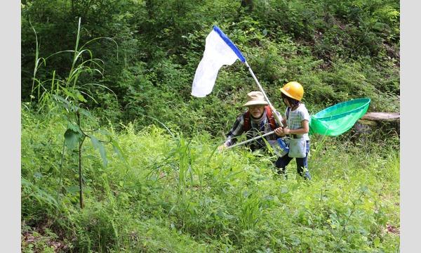 みんなの里山「市民の森」で いきもの探し(9/21) イベント画像2