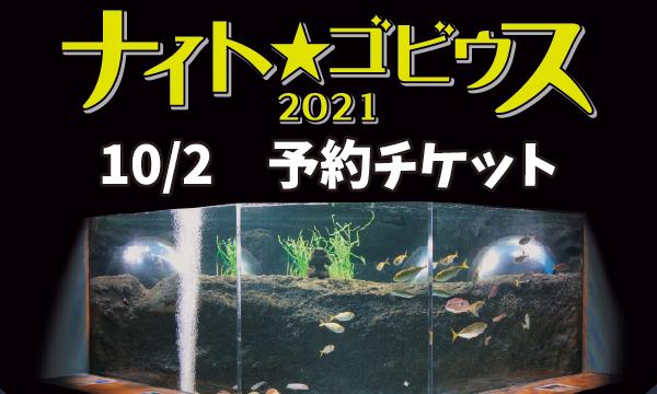 【10/2】ナイト★ゴビウス 2021 イベント画像1