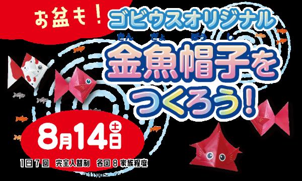【8/14】お盆もゴビウスオリジナル金魚帽子をつくろう! イベント画像1
