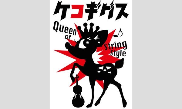 "〜VIOLIN COVER LIVE〜 ""KEKO GIGS 5"" イベント画像3"