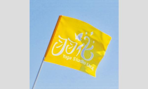 人気スポット逗子海岸でサンセット・ヨガ体験(Yoga Studio UcA)、参加者特典有。黄色いフラッグが目印。 イベント画像2