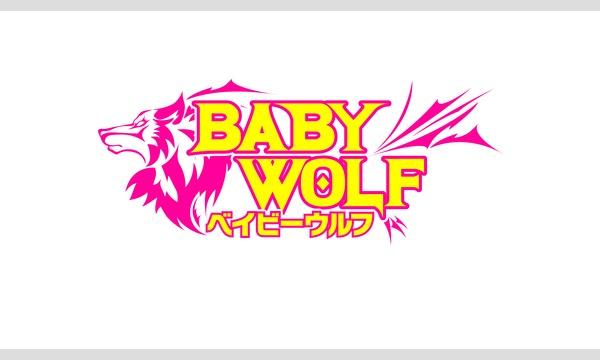 【ベイビーウルフ】狼×読  vol.1 5/18(土)昼公演【朗読劇】 イベント画像1