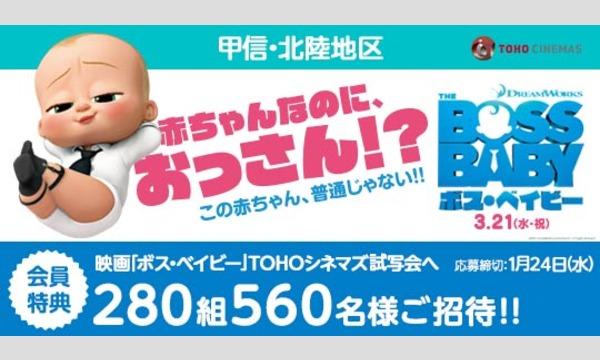 05.【甲信・北陸地区】映画「ボス・ベイビー」試写会にご招待!