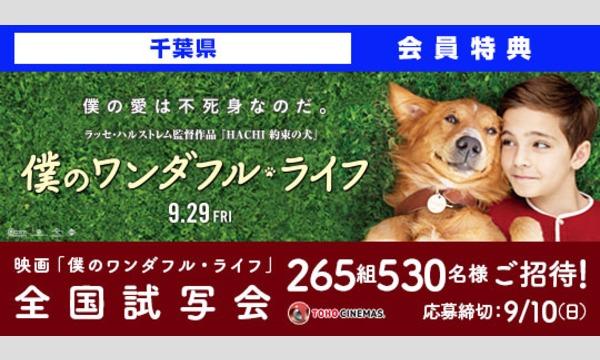 03.【千葉県】映画「僕のワンダフル・ライフ」試写会にご招待!