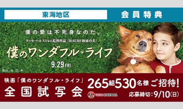 06.【東海地区】映画「僕のワンダフル・ライフ」試写会にご招待!
