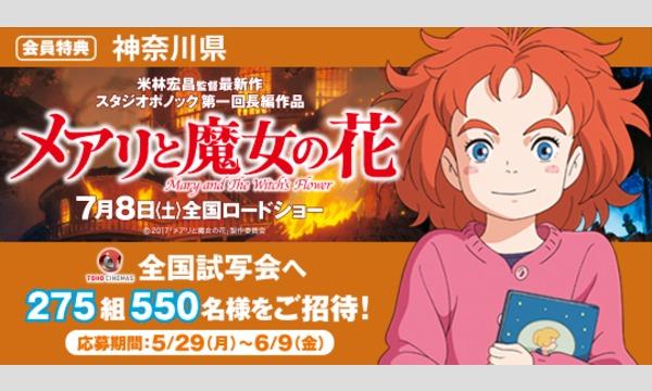 04.【神奈川県】映画「メアリと魔女の花」試写会にご招待!