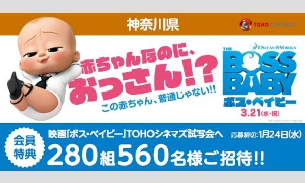 04.【神奈川県】映画「ボス・ベイビー」試写会にご招待!