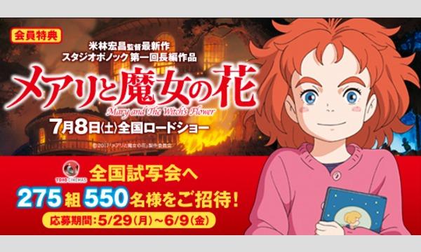 【Yahoo!チケットプラス特典】映画「メアリと魔女の花」試写会にご招待!