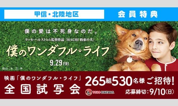05.【甲信・北陸地区】映画「僕のワンダフル・ライフ」試写会にご招待!