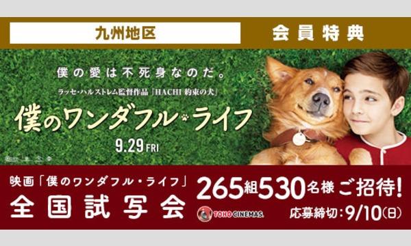 09.【九州地区】映画「僕のワンダフル・ライフ」試写会にご招待!