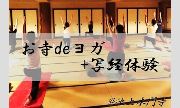 お寺deヨガ+写経体験@池上本門寺〜あなたも、非日常体験を味わってみませんか?〜 イベント画像1