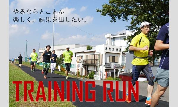 TRAINING RUN@みなとみらい〜みなとみらいで夏を感じよう!〜 イベント画像1