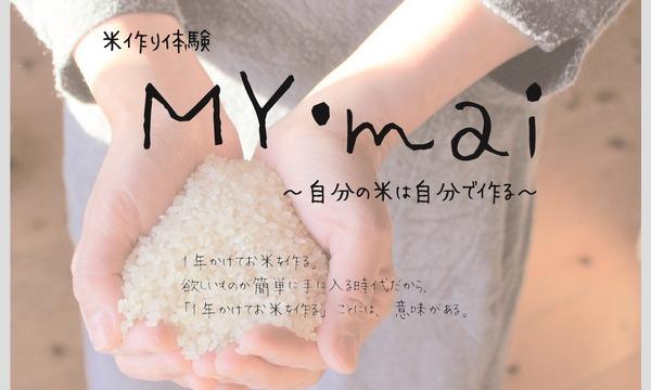My Mai イベント画像1
