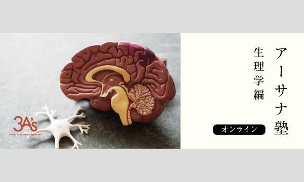 【アーサナ塾オンライン講座】〜生理学編〜呼吸とヨガ イベント画像1