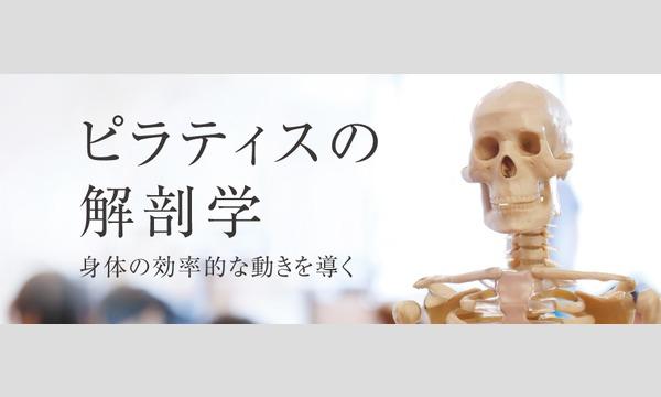 【オンライン】ピラティスの解剖学 ~身体の効率的なエコノミックムーブメント〜 8月18日(火)講師:瀬戸 景子 イベント画像1