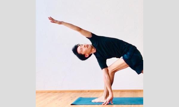 【オンライン】国際Yoga Days ヨガシナジーで実践するヨーガ哲学 (75分)6月21日(月)19:00-20:15 イベント画像2