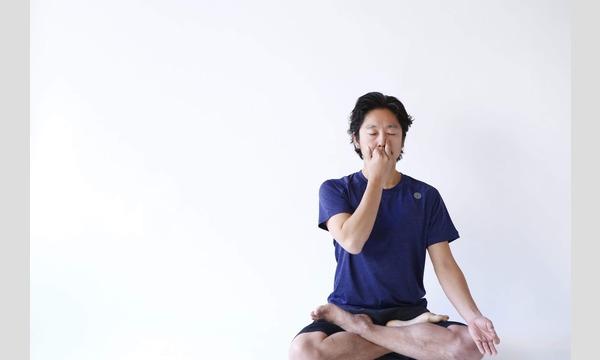 【ヨガシナジーWS】 呼吸への理解を深めるためのプラーナヤーマ×ヨガシナジー 2021年2月21日(日) イベント画像1
