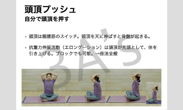 【アーサナ塾オンライン講座】セルフワーク〜腹筋系・その他〜 イベント画像2