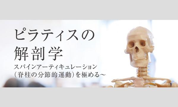 株式会社P3の【オンライン】ピラティスの解剖学 ~スパインアーティキュレーションを極める~ 8月11日(火) 講師:瀬戸 景子イベント