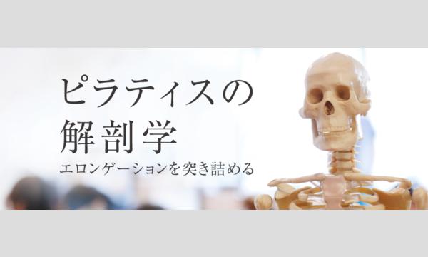 株式会社P3の【オンライン】ピラティスの解剖学 〜エロンゲーションを突き詰める 〜3月7日(日)講師:瀬戸景子イベント