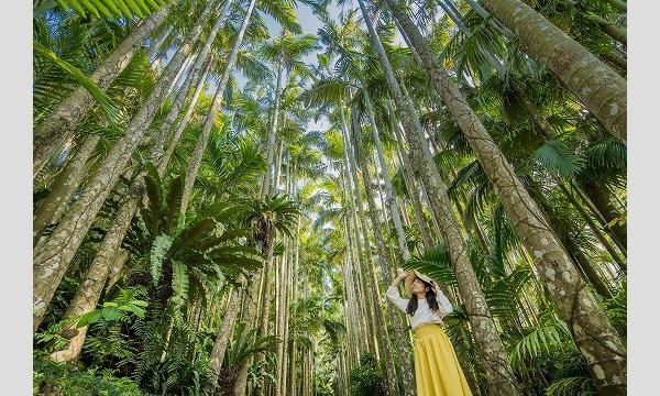 【最大170円割引】自然の力を浴びてパワーチャージ!東南植物楽園|入園散策プラン イベント画像1