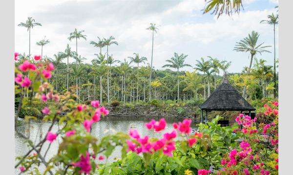 【最大170円割引】自然の力を浴びてパワーチャージ!東南植物楽園|入園散策プラン イベント画像3