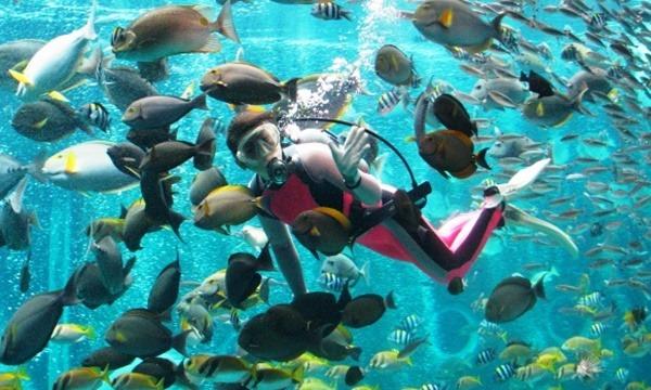 箱根園水族館 割引入場券 最大1,100円割引 イベント画像2