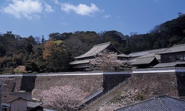 松浦史料博物館 入館券 イベント画像1