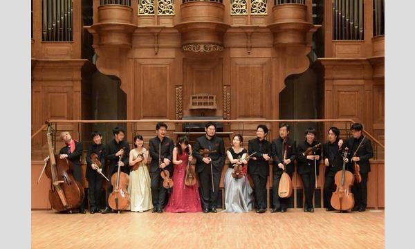 La Musica Collana  - Baroque Concerto Festival Vol.6 -【東京公演】 イベント画像1